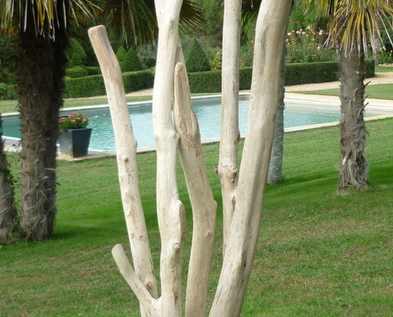 Various driftwood furniture