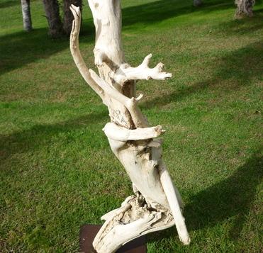 Décorer une entreprise avec des objets en bois