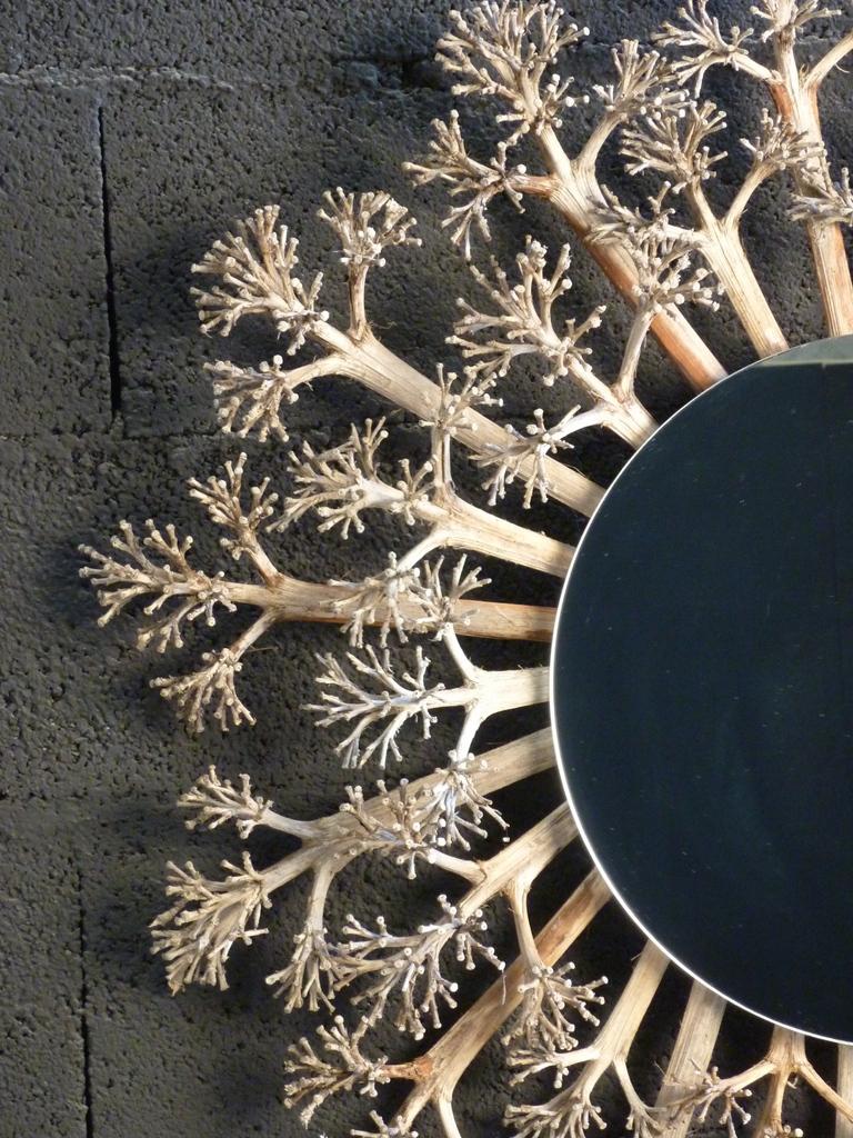 miroir agave.2.JPG