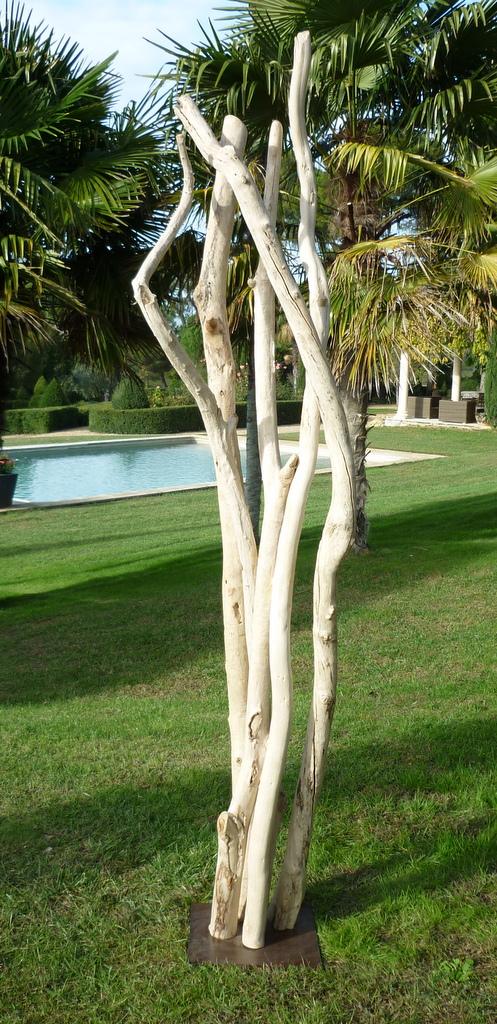 photos sculptures bois flotte 166.jpg