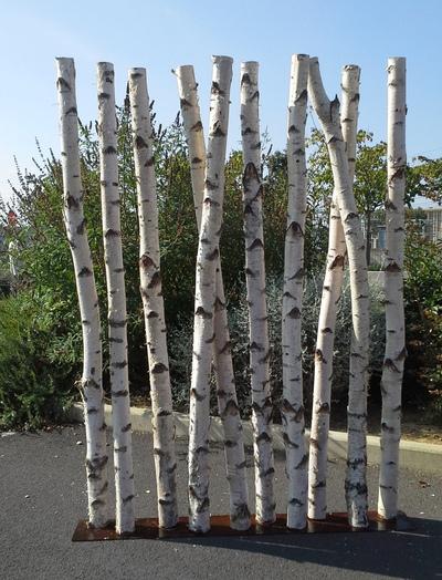 Paravent en troncs de bouleaux de 2m de hauteur et 30 cm de largeur