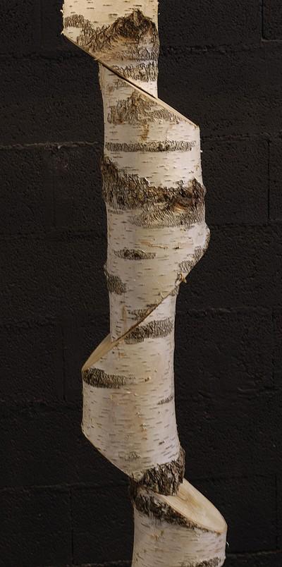 lampadaire en tronc de bouleau