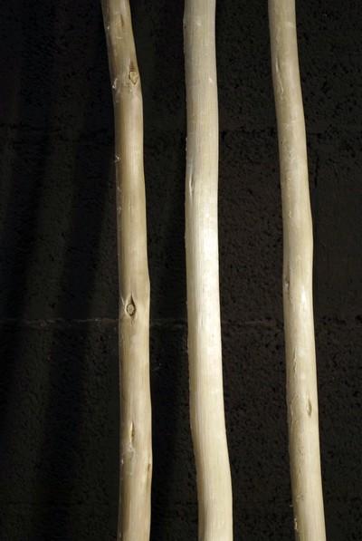 Branches de bois écorcées en 180cm