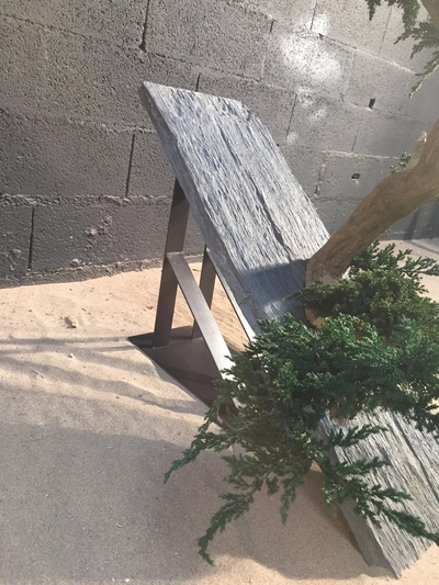 Bonzaï avec du junipérus sur une ardoise