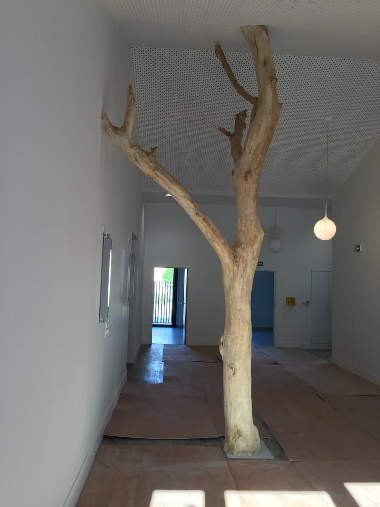 arbre mort en bois flotté ex chantier pharmacie