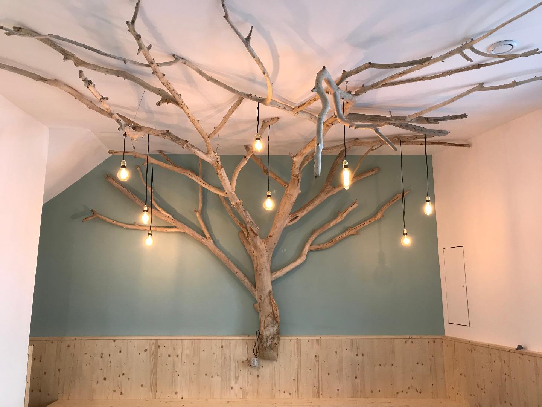 Bois Flotté Pour Pergola dead tree in driftwood