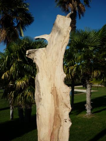 sculpture en planche de bois flottant