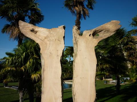 sculpture en planches de bois flotté