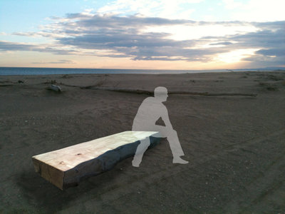 Banc en bois flotté avec pieds en acier