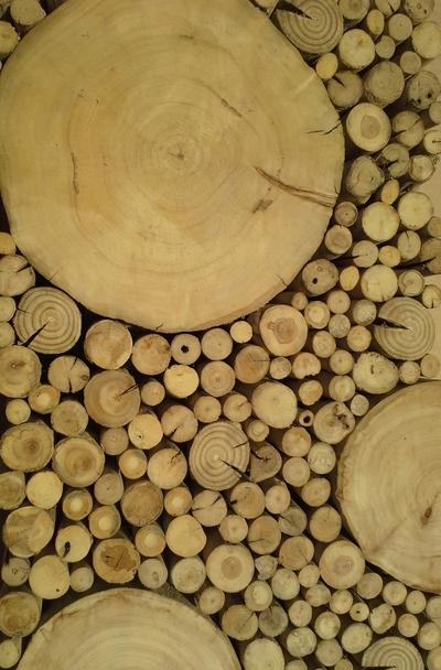 Le bois debout