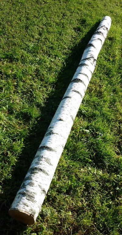 troncs de bouleau de 2m en 20cm de diametre