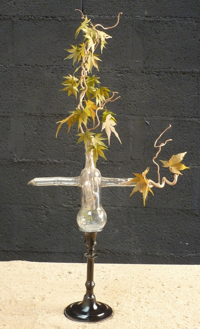 Maple branches in a laboratory flask