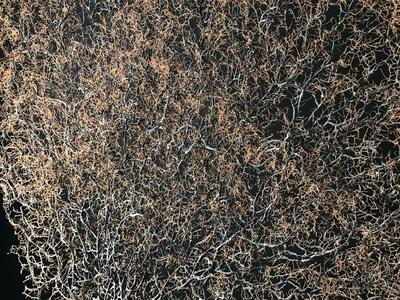 Gorgone noire géante 130cmx115cm