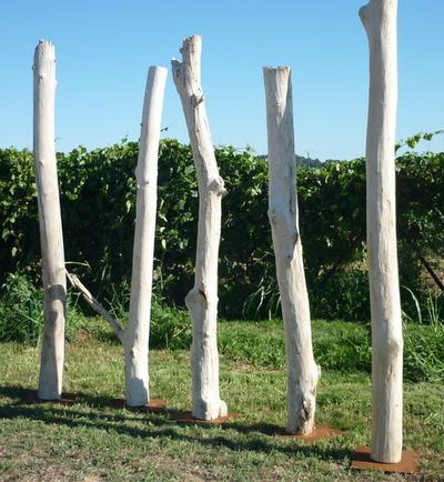 troncs de bois flotté montés sur socle