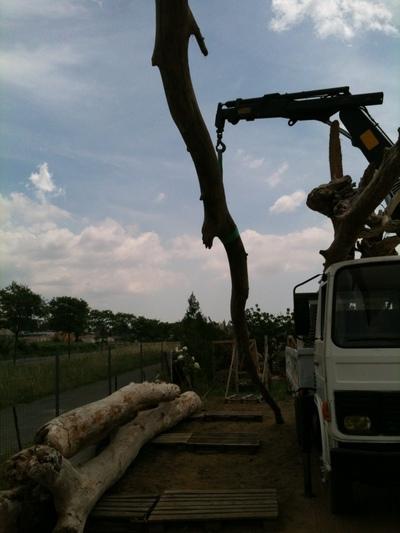 Logistique camion