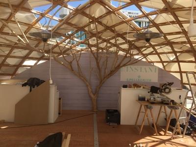 Un arbre en bois flotté au festival de Cannes